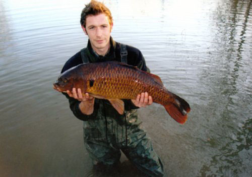 oaks lakes sessay Fish here - fishing uk app - oaks lakes - the oaks lakes, sessay were opened in 1994 we originally opened with 1 lake willows in 1996 we added the oaks and firs lakes , followed in 1998.