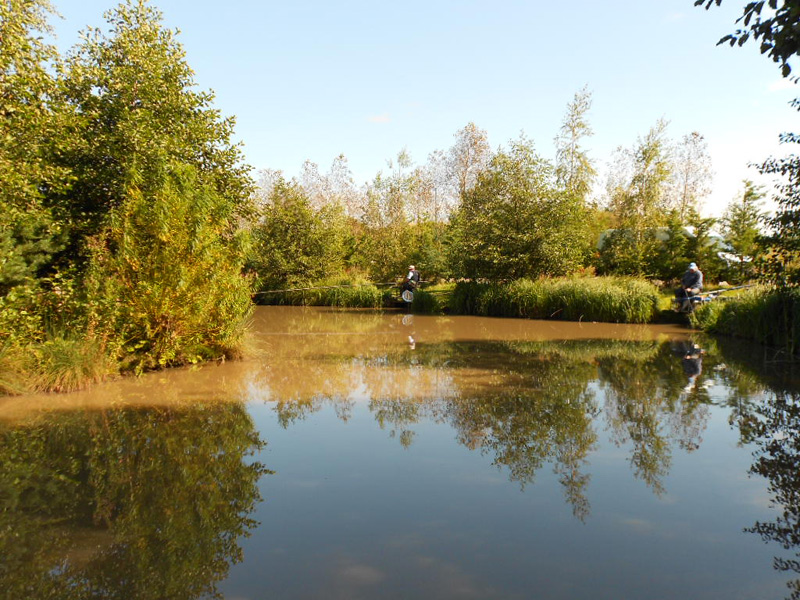 oaks fishery sessay The latest tweets from oaks lakes sessay (@oakslakes) the oaks lakes sessay match and pleasure fishing on 10 lakes visit our site for more information: http://tco.
