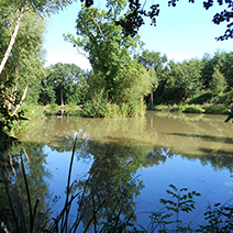 oaks lakes sessay